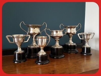 Group Of 6 Vintage Silver Plate Trophy Cups With Black Wooden Bases