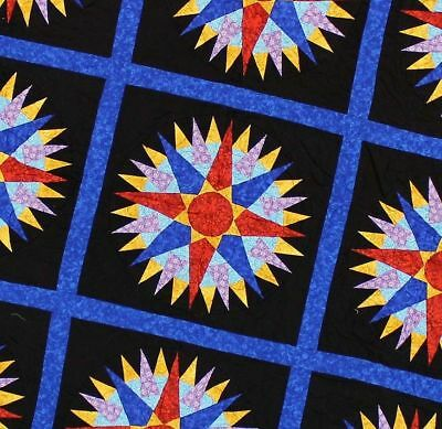 Amish Styled Mariners Compass FINISHED QUILT Great Hand Applique border details