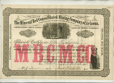 1881 Mineral Bed Consolidated Mining Company Of Arizona Stock Certificate