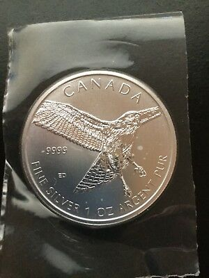 2015 1 oz. 9999 Fine Silver Canadian Red Tailed Hawk Flex Sealed from the mint