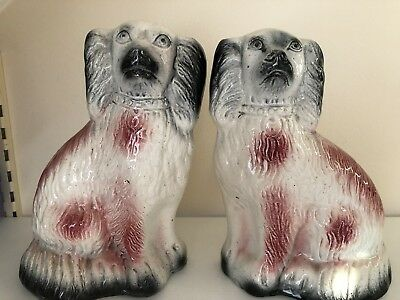 """Antique Pair Of Pink Staffordshire Spaniel Wally Dogs - Rare Colour - 8"""""""