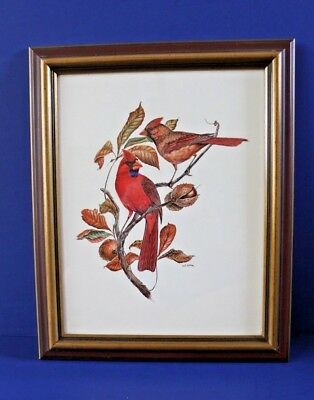 Vintage Framed W. D. Gaither Cardinal Birds Offset Lithograph Print