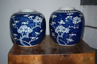 A FINE CHINESE ANTIQUE PRUNUS & HAWTHORN JARS -19th