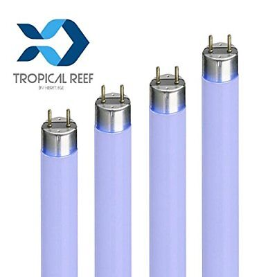 Aqua Zonic T8 Super Marine Blue Actinic 18w 24  Aquarium Fish Tank Light Tube Bu