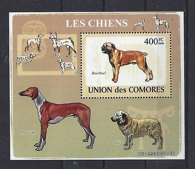 Art Postage Stamp SOUTH AFRICAN BOERBOEL DOG AZAWAKH AIDI Comores 2009 SS MNH