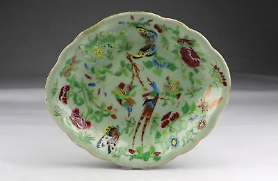 Antique 19thC Chinese Qing Famille Rose Canton Butterfly Porcelain Oval Dish