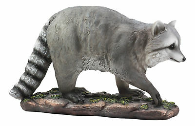 "Night Bandit Large Snooping Raccoon Statue 16""Long Wildlife Taxidermy Decor"