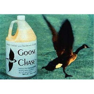 Bird-X BS-GAL Bird Stop Goose Chase Repellent Chemical
