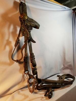 Civil War Union Cavalry Bridle