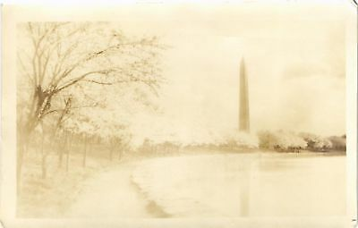 Dr Jim Stamps Us Washington Monument Cherry Blossoms Real Photo