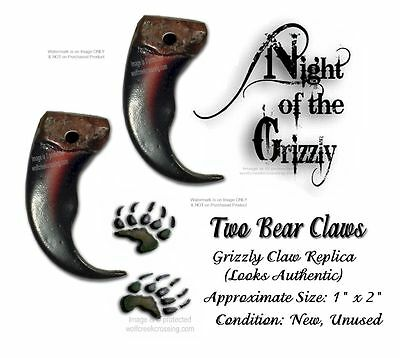 Two Rugged Grizzly Bear Claws  Drilled For Crafts Necklace Jewelry Art Projects