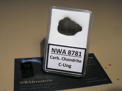 Meteorite NWA 8781 - Classified C-Ung (Carbonaceous Ungrouped) - Crusted Frag.