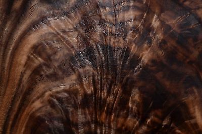 Walnut Crotch Raw Wood Veneer Sheets 7.5 x 13  inches 1/42nd thick       7222-29