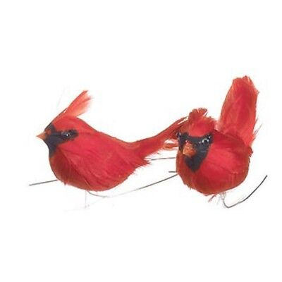 "Lot of 4 Feathered CARDINAL BIRDS Red Feathers 2"" Crafts Arrangements X-mas"