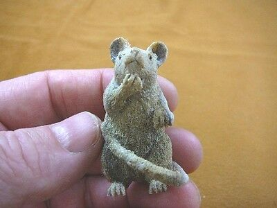 (RAT-3) gray white Rat shed ANTLER figurine Bali detailed carving pet rats mouse