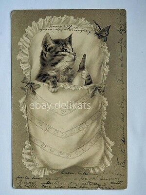GATTO CAT farfalla butterfly AK old postcard vecchia cartolina