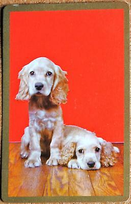 Dog- Gold Cocker Spaniels On Red- Gold Border -Single Vintage Swap Playing Card