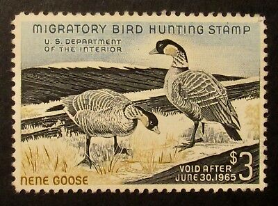 RW31 - 1964 Federal Duck Stamps - Mint - Never Hinged