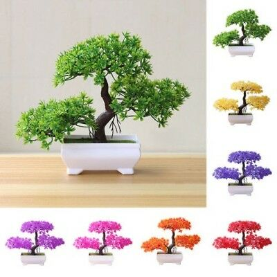 25.4cm Artificiale Pianta Plastica Mini Pino Albero Bonsai in Pentola Ufficio