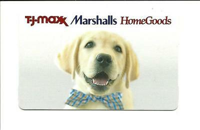 TJ Maxx Marshalls HomeGoods Cute Puppy Gift Card No $ Value Collectible Dog