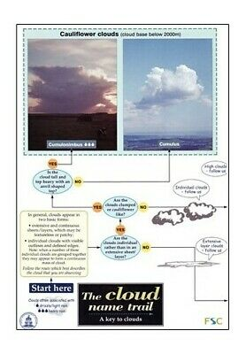 The Cloud Name Trail: A Key to Clouds by Bill Boo Wallchart Book The Cheap Fast