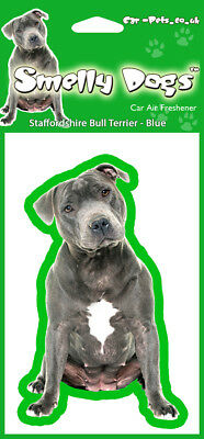 Staffordshire Bull Terrier Blue Air Freshener