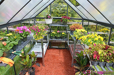 Palram Hybrid™ 6 Ft. W x 6 Ft. D Greenhouse