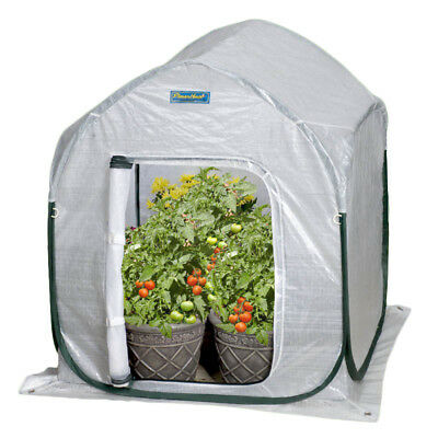 Flowerhouse PlantHouse 2 Ft. W x 2 Ft. D Mini Greenhouse