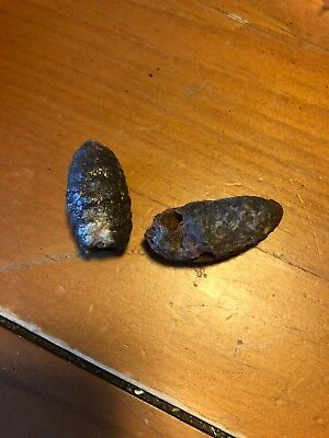 *lot Of Two Antique Petrified Fossilized Fossil Pine Cone, Pinecone