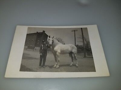 Vintage Rppc Postcard Fire Dept Horse With Fireman