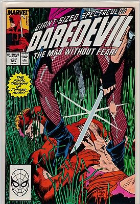 Marvel Comics Daredevil #260 (Typnoid Mary)  Mint Never Been Read