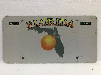 "Florida license plate real sample, *blank* prototype ""state map"""