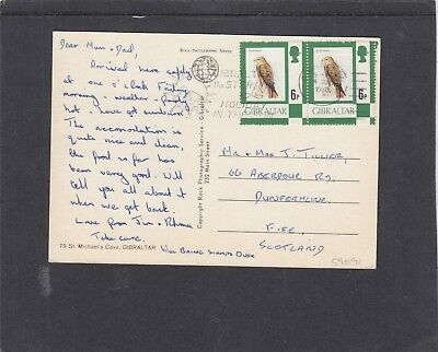 Gibraltar 1977 6p Black Kite bird pair on picture postcard of St Michael's Cave