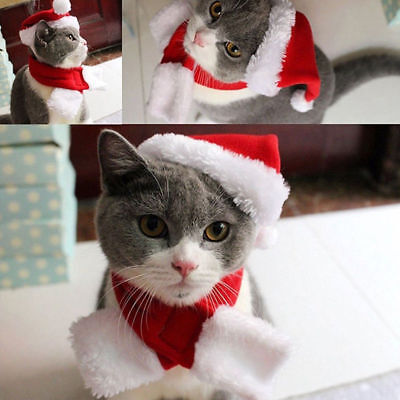 Us Stock Plush Pet Cat Dog Santa Hat & Scarf Christmas  2 Piece Costume