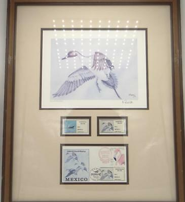 1994 First Nation Mexico Duck Stamp Print Signed Antonio Rovira Pintail Framed