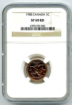 1988 Canada Cent Ngc Sp69 Rd Frosted Super Rare Superior Strike Top Pop=7
