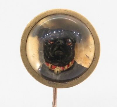 .Large Antique Victorian Reverse Intaglio Essex Crystal Pug Dog Gold Stick Pin