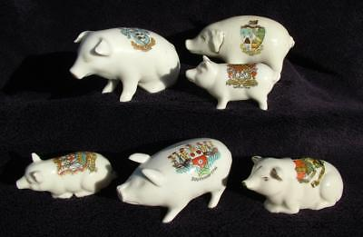 6 x ANTIQUE CRESTED WARE PIGS STOKE WEXHAM STIRLING FOWEY BRIGHTON SOUTHAMPTON