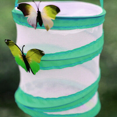 Butterfly Chameleon Pops-up Cage Praying Mantis Insect Trap Housing Enclosure CB