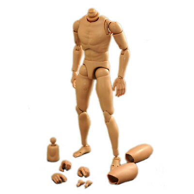 [wamami] 1/6 Male Body Narrow Shoulder Hot  toys Doll Action Figure 25cm
