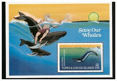 Turks & Caicos Islands 1983 Whales Minisheet Mint Never Hinged Fin Whale