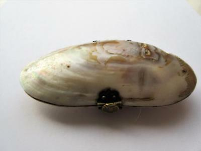 ANTIQUE 19th CENTURY MOLLUSK, MUSSEL SHELL PURSE with BRASS FITTINGS!