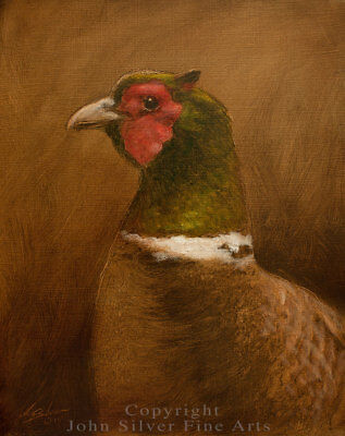 PHEASANT PORTRAIT ORIGINAL OIL PAINTING by Award Winning Artist JOHN SILVER. BA.