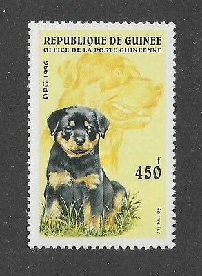 Dog Art Pup Body & Adult Head Portrait Postage Stamp ROTTWEILER Guinea 1996 MNH