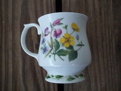 Queen's Royal Horticultural Society Coffee Cup Mug The Garden Fine Bone China