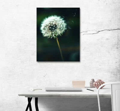 "Beautiful Dandelion 16x20"" Wall Art Poster Print On Home Decor Canvas Painting"