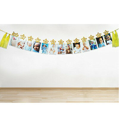 1st Birthday Recording 1-12 Month Photo Baby Shower Bunting banner Garlands CUTE