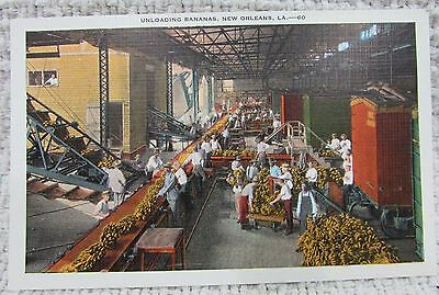 Unloading Bananas at New Orleans LA Louisiana old color linen postcard FREE S/H