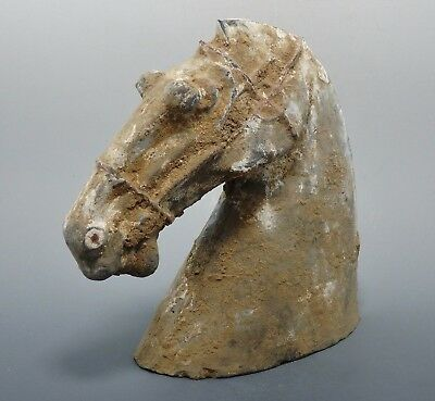 Han Dynasty Chinese Terracotta Horse Head (230H)
