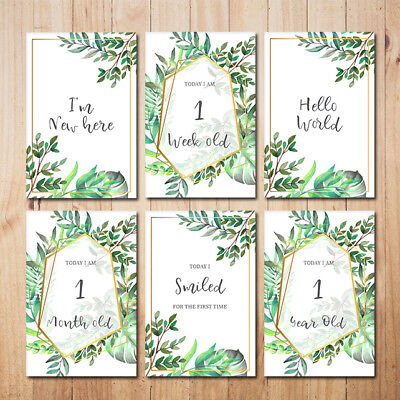 Printable Leaves Baby Milestone Cards - DIGITAL FILE ONLY - 34 card set